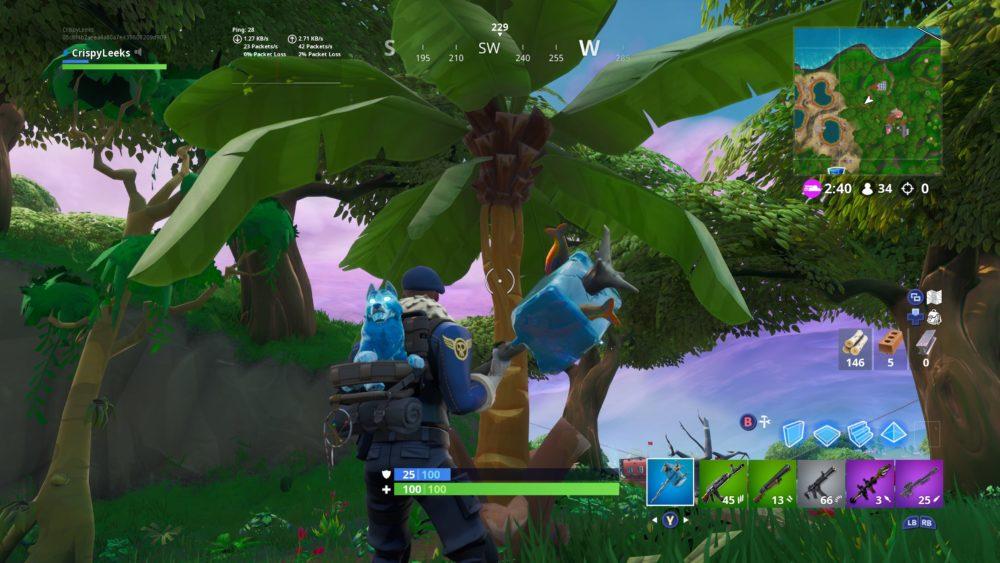fortnite coconuts