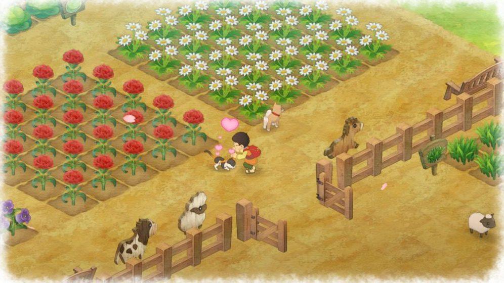 Doraemon Story of Seasons (1)