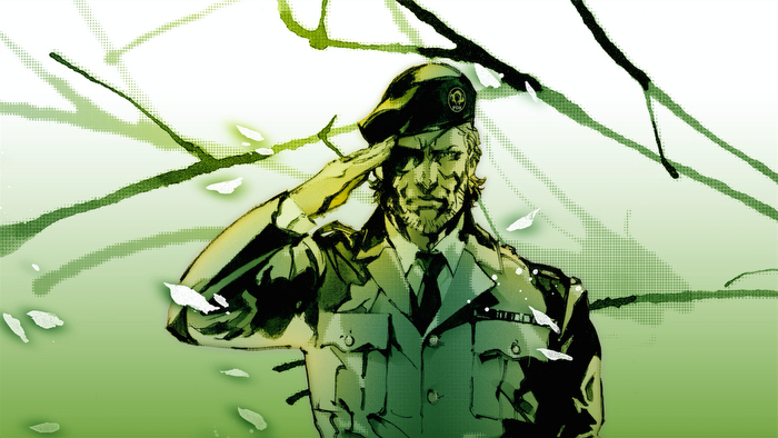 Metal Gear Solid 3, Video Game Stories That Are Super Depressing