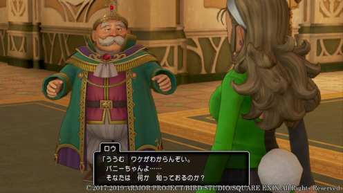 Dragon Quest XI S (19)