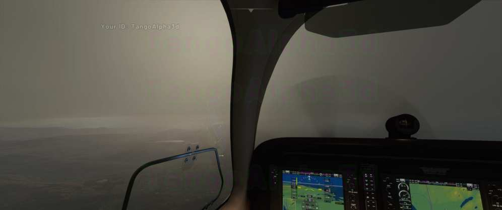 Flight Simulator 2020 (8)
