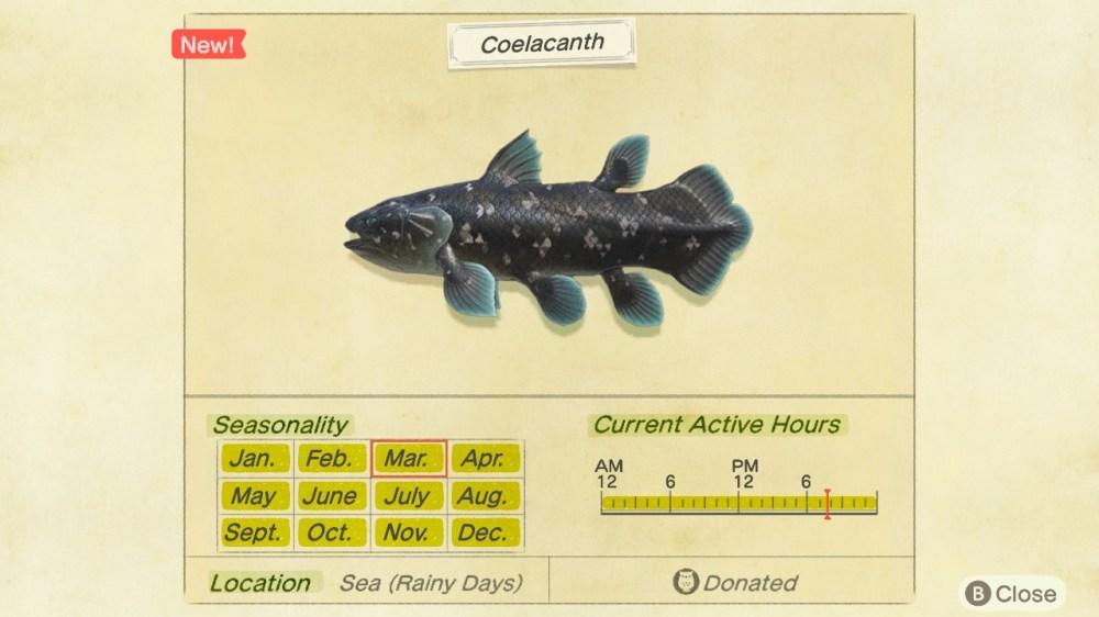 animal crossing new horizons coelacanth