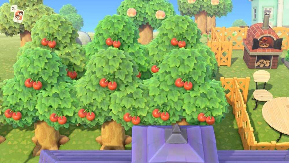 Animal Crossing New Horizons Orchard
