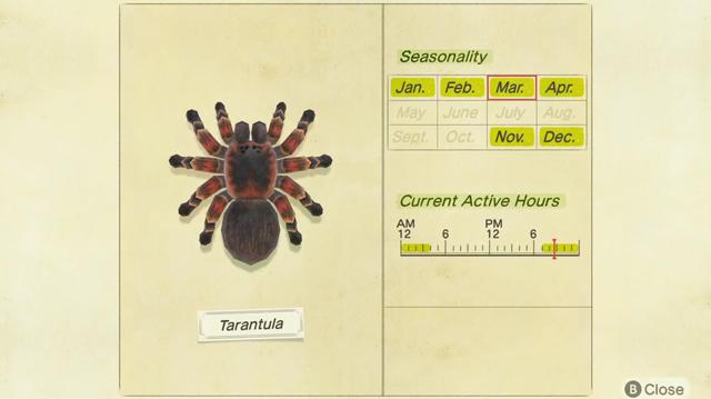 tarantulas in animal crossing new horizons