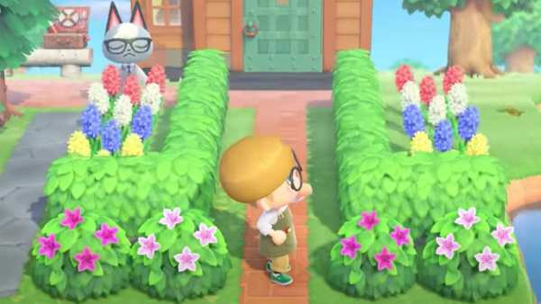 Animal Crossing New Horizons Leif Shrubs