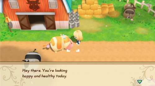 Story of Seasons Friends of Mineral Town (11)