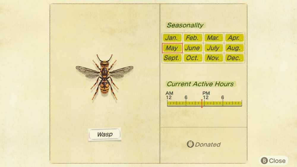 wasp, new horizons