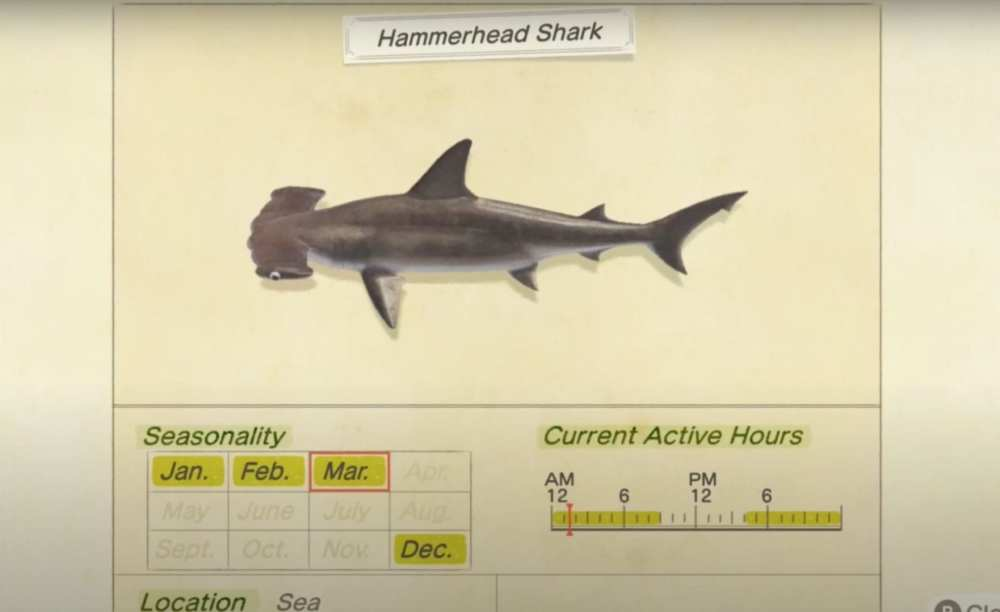 animal crossing new horizons, hammerhead shark