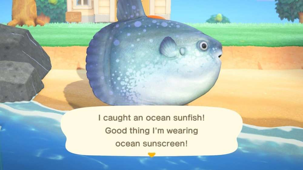 Ocean Sunfish Animal Crossing New Horizons