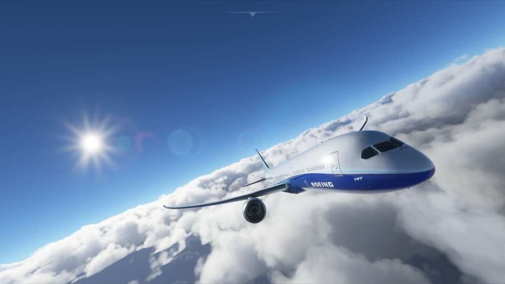 Microsoft Flight Simulator (29)