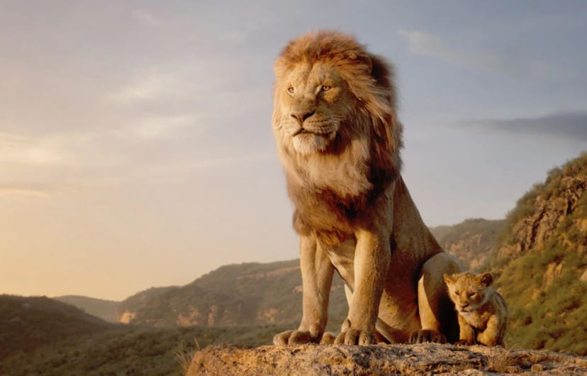 Barry Jenkins to Direct The Lion King Sequel; Will Explore Mufasa's Origin