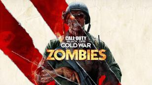 call of duty black ops cold war, zombies