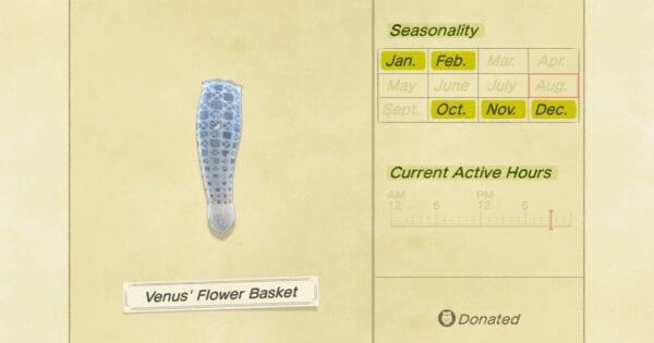 animal crossing new horizons, venus' flower basket