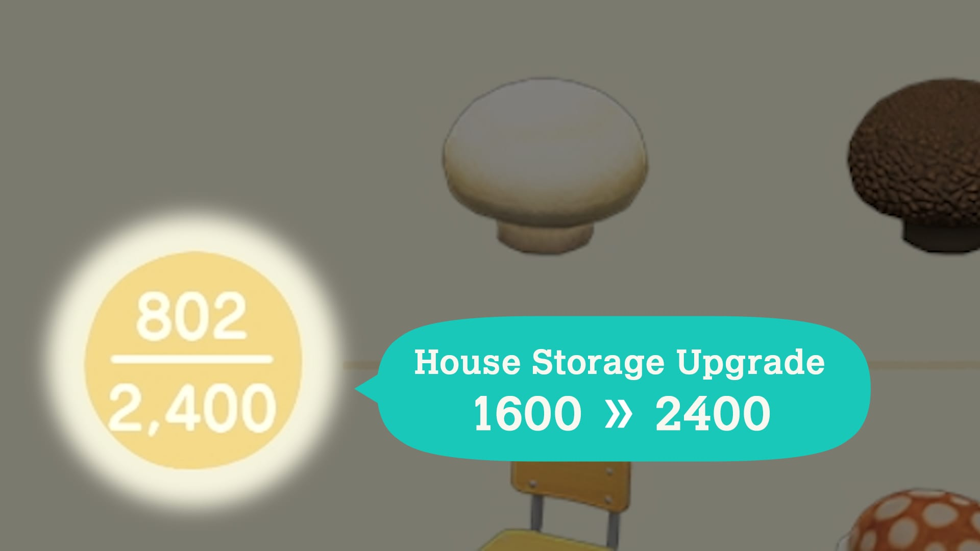 house storage upgrade