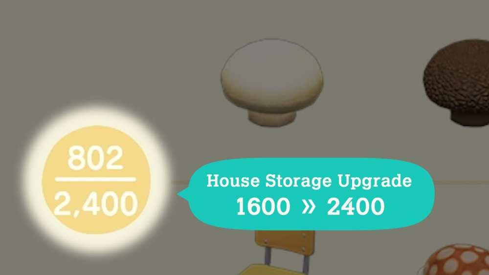 house storage upgrade