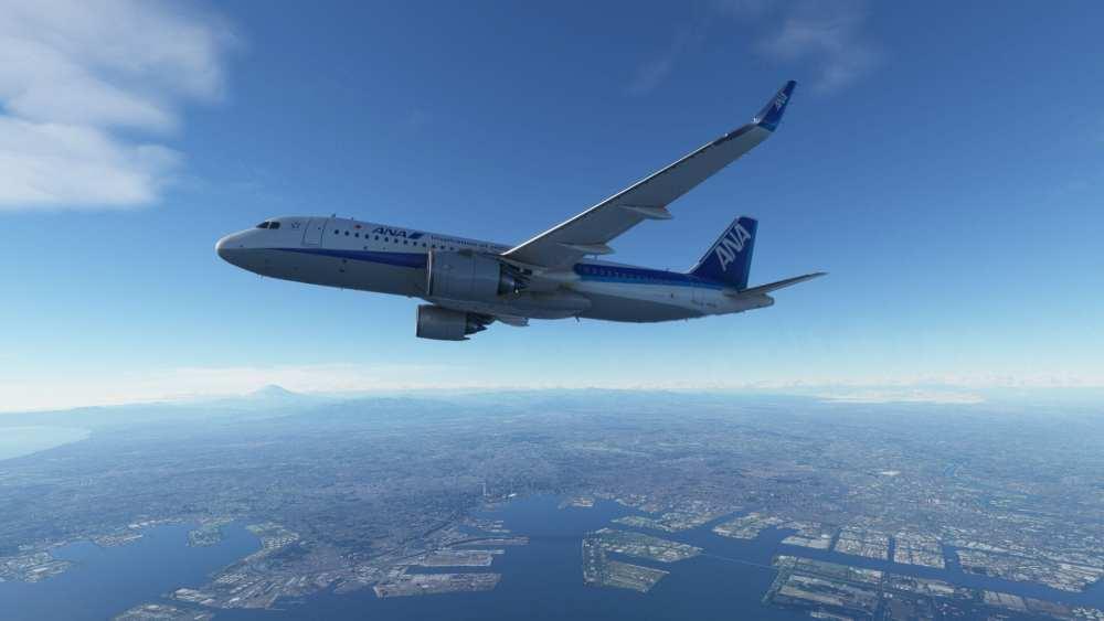 Microsoft Flight Simulator Interview