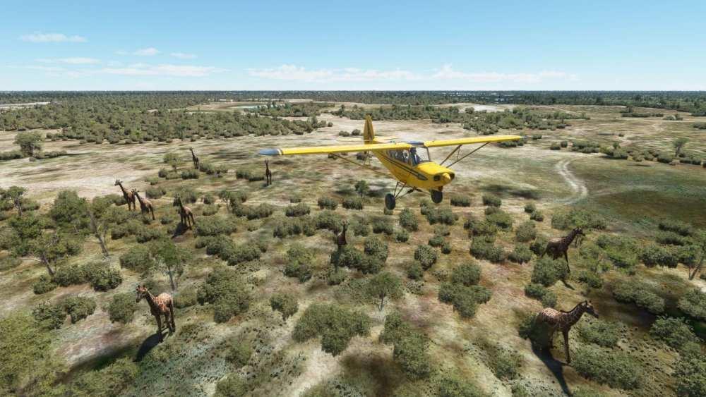 Microsoft Flight Simulator Okavango Delta