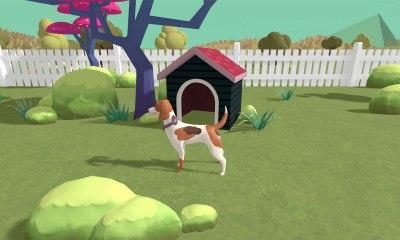 A dog lost in a backyard