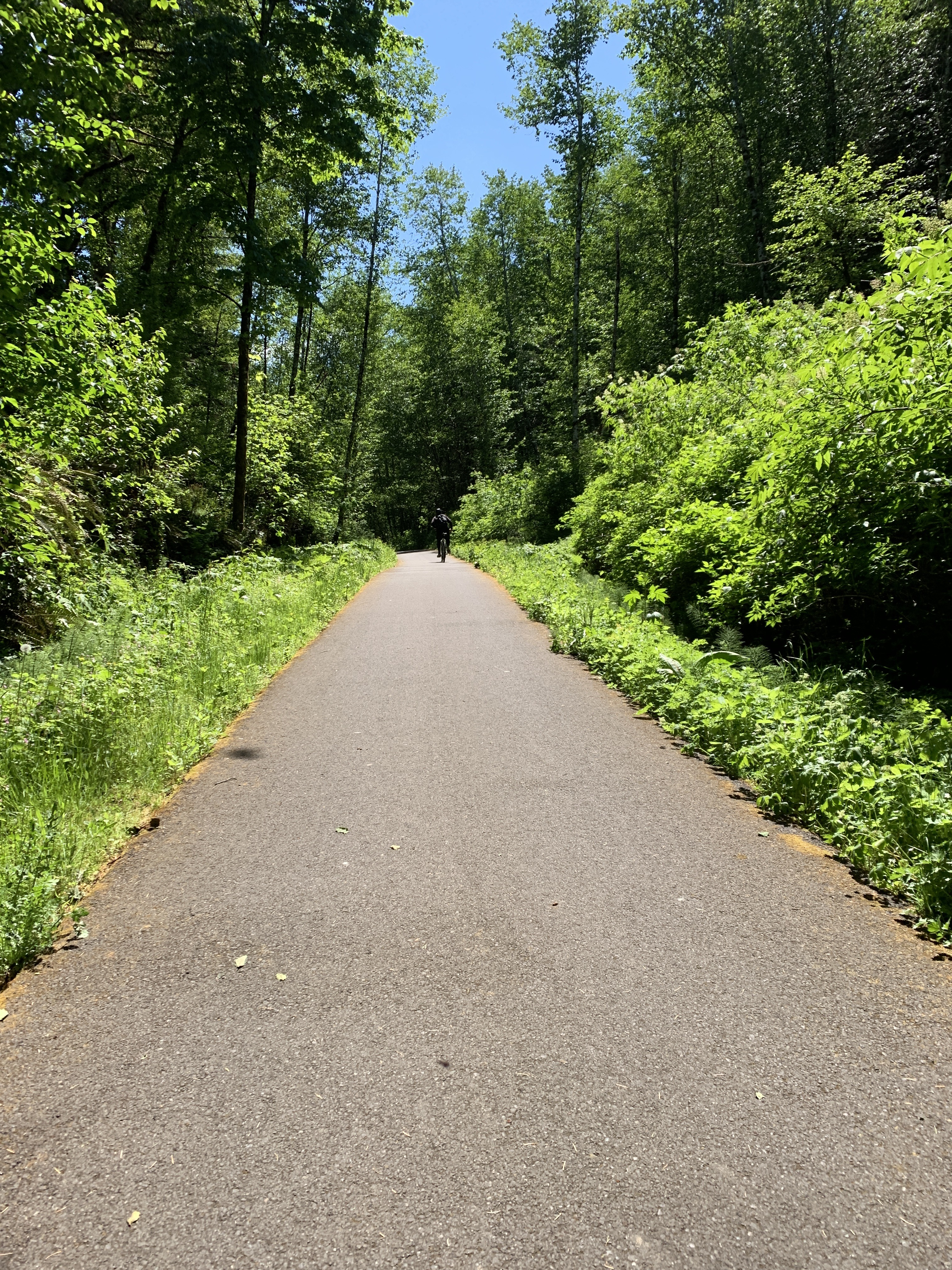 The Banks-Vernonia Rails-to-Trails State Park