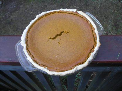Blue Hokkaido squash pie