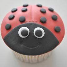 Cupcakes met fondant