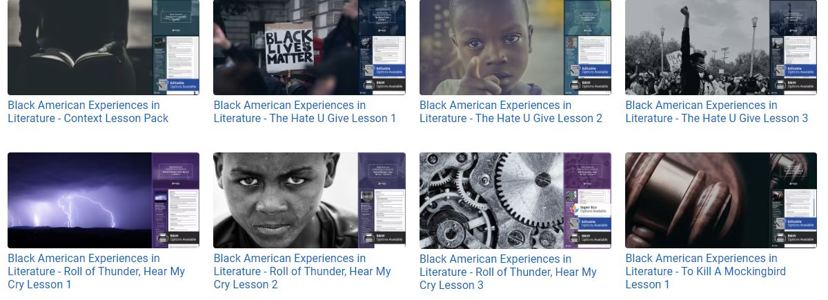 The Black American Experience