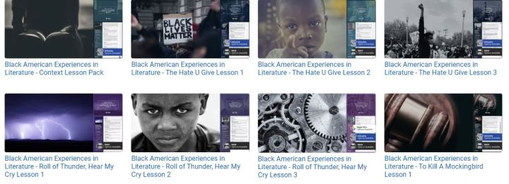 The Black American Experience - Beyond