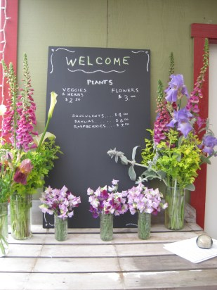 Plant sale Sign with Flowers