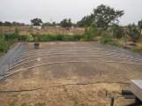 Hoop house 2