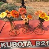 Kubota zinnia party