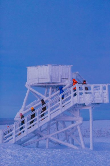 what to do in the finnish arctic