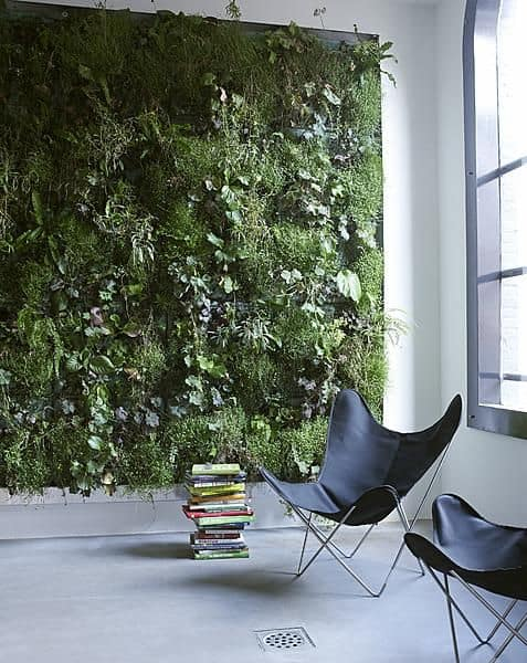 feature-living-wall