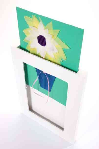 Gallery Picture Frame - Amazon