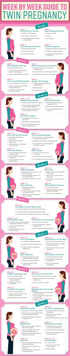 Twin_Pregnancy_Infographic