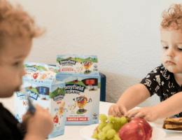 Stonyfield Organic Kids Pouches Making Mornings Easier