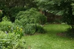 12508030@N06_7203002362_TPN gardens 017