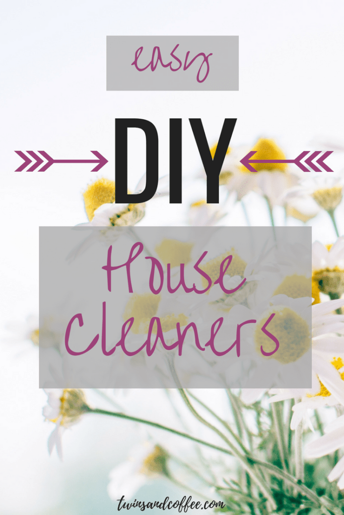 DIY house cleaners