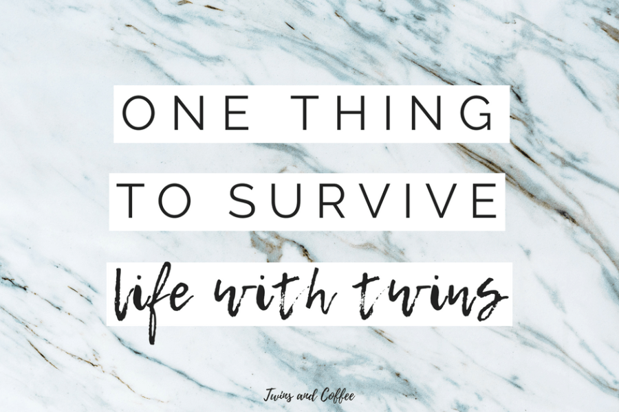 The one thing you need to survive twins written by a new twin mom