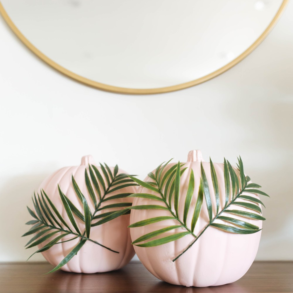 DIY Plants on Pink Pumpkins | Twinspiration