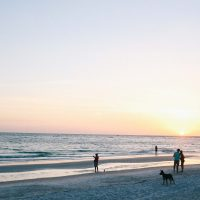 The Best Things to do in St Pete, Florida