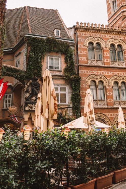 The prettiest spots in Vienna