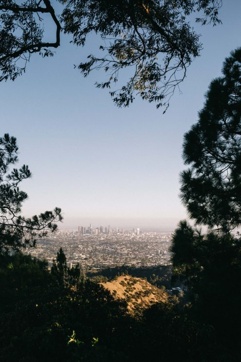 One Day in LA