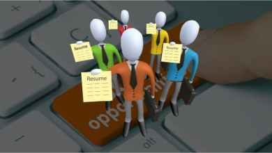 Article Picture For Job Portal Website 01