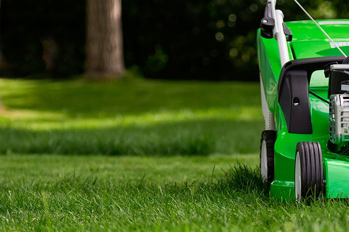 weekly or bi-weekly lawn cutting