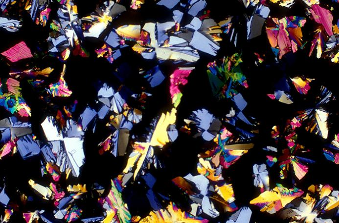 gin-magnified-image