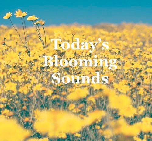 """New Twistedsoul """"Today's' playlist."""