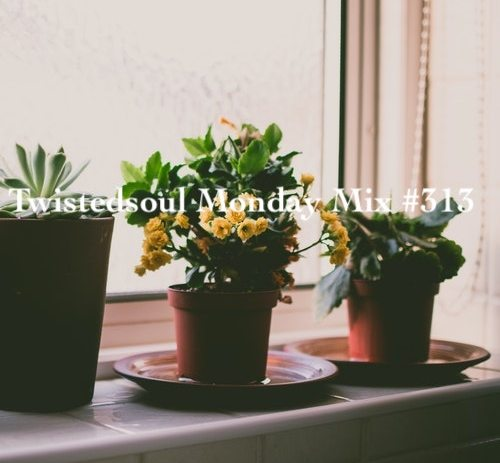 Twistedsoul Monday Mix #313.