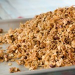 Homemade Coconut Pecan Granola   Twisted Tastes