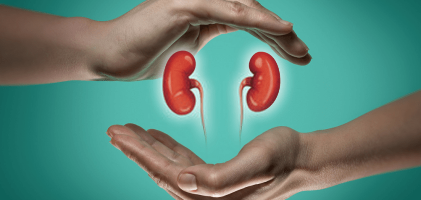 Chronic Kidney Disease Symptoms, Causes, And Preventions