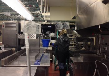 Fast Food Restaurant Kitchen Heavy Duty Deep Cleaning Service in Carrollton TX 23 b6aefffdf1d9100b05a04f7faf6818b2 350x245 100 crop Fast Food Restaurant Kitchen Heavy Duty Deep Cleaning Service in Carrollton, TX